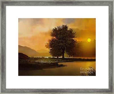River Tree Framed Print by Robert Foster