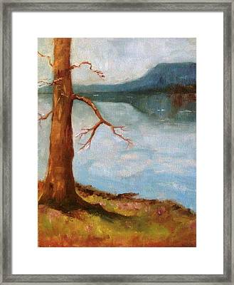 View Of Nebo Framed Print