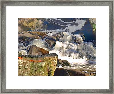 Framed Print featuring the photograph River Wild by Raymond Earley