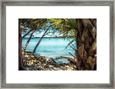 River Wilderness Framed Print