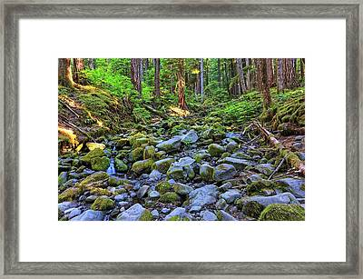 Riverbed Full Of Mossy Stones With Small Cascade Framed Print