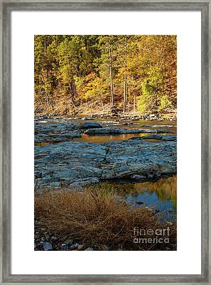 Framed Print featuring the photograph Riverside by Iris Greenwell