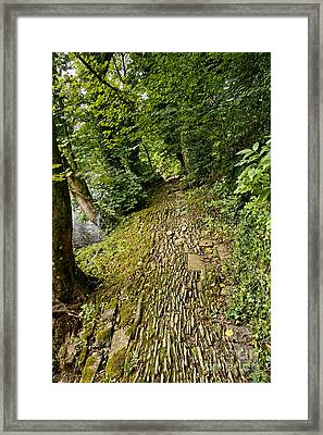Riverside Walk Framed Print
