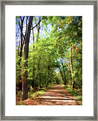 Framed Print featuring the photograph Riverway Trail - Bisset Park - Radford Virginia by Kerri Farley