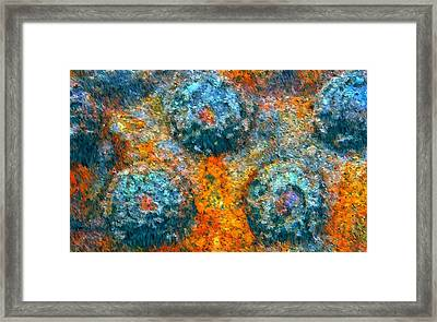 Riveted Framed Print by Steven Richardson