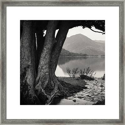 Rivulet To Buttermere Framed Print by Dave Bowman