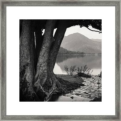 Rivulet To Buttermere Framed Print