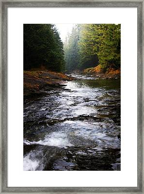 Framed Print featuring the photograph Rivulet by Votus
