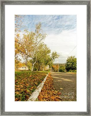 Road In Autumn Framed Print
