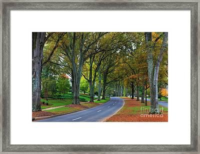 Road In Charlotte Framed Print