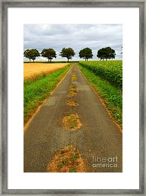 Road In Rural France Framed Print by Elena Elisseeva
