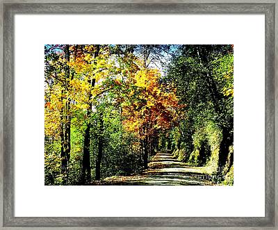Framed Print featuring the photograph Road Into Autumn by Terri Thompson