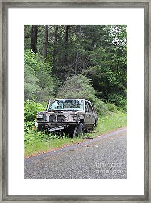 Framed Print featuring the photograph Road Kill by Marie Neder