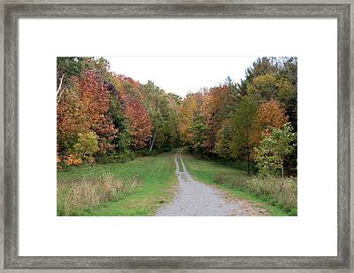 Road Less Traveled Framed Print by George Jones