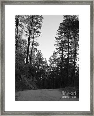 Road Less Traveled Framed Print
