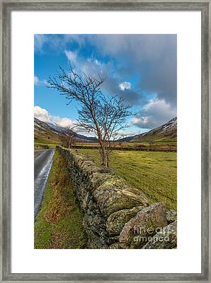 Road Less Travelled Framed Print by Adrian Evans
