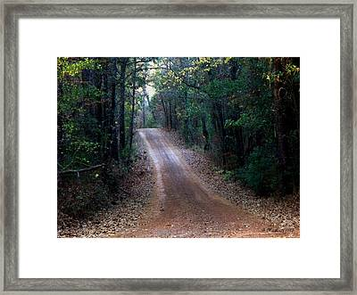 Framed Print featuring the photograph Road Not Taken by Betty Northcutt