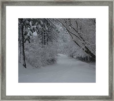 Road Out Framed Print by Nancy Rohrig