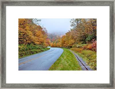 Road Through Autumn Paradise Framed Print by Dan Carmichael