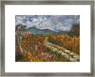 Road Through Colored Meadows Framed Print by Emily Michaud