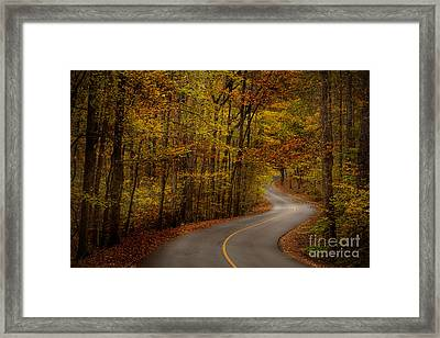 Framed Print featuring the photograph Road Through Tishomingo State Park by T Lowry Wilson