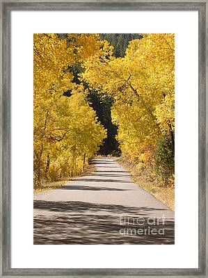 Road To Autumn Framed Print by Dennis Hammer