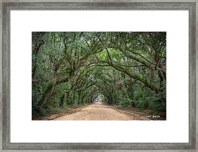Road To Botany Bay Framed Print