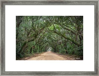 Road To Botany Bay Framed Print by Walt  Baker