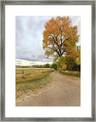 Road To Dads Place Framed Print