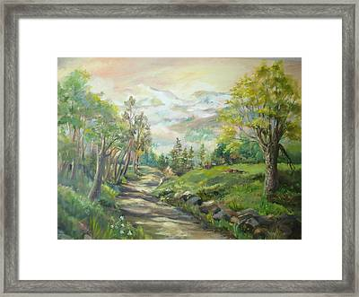 Road To Grandfather Mountain Framed Print by Marilyn Masters