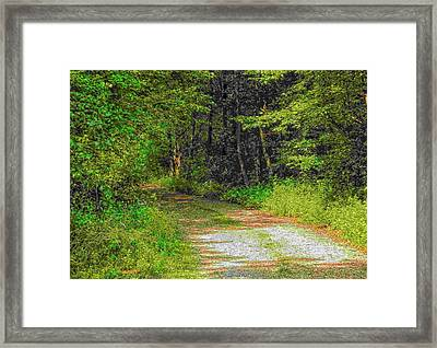 Road To Heaven Framed Print by Michael Degenhardt