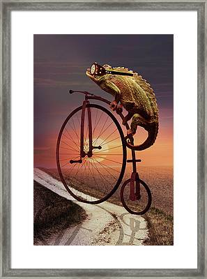 Road To Home Framed Print