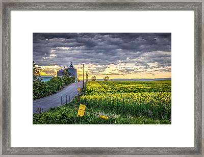 Road To Mann's Lake Framed Print