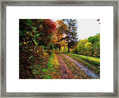 Road To My Farm Framed Print by Terry  Wiley