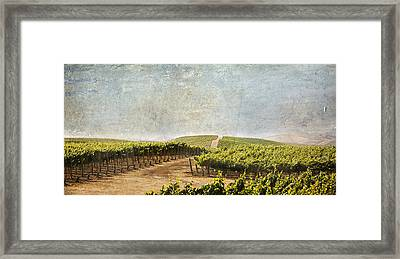Road To Riches Framed Print by Marilyn Hunt
