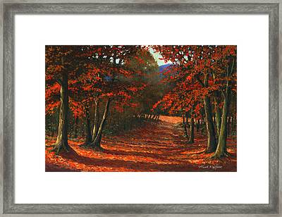 Road To The Clearing Framed Print by Frank Wilson