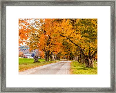 Road To The Farm Framed Print
