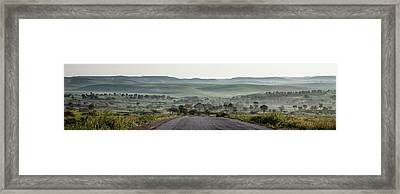Road To The Forest Framed Print