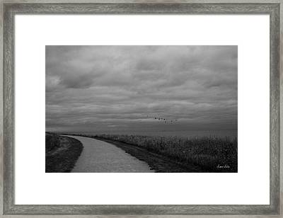 Road To The Left Black And White Framed Print