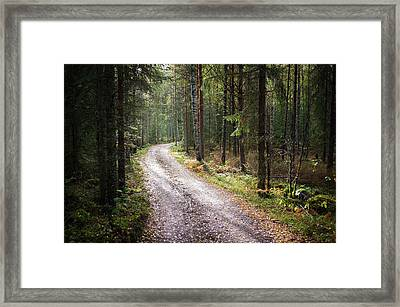 Road To The Light Framed Print by Teemu Tretjakov