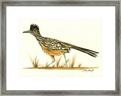 Roadrunner Bird Framed Print by Juan Bosco