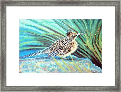 Roadrunner Fluffing Sold   Pastel Framed Print by Antonia Citrino