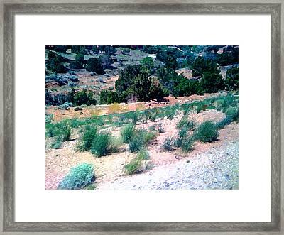 Roadrunner From Albuquerque To Santa Fe Framed Print by Charlie Spear