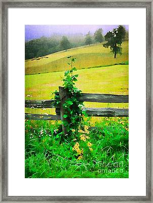Roadside Beauty Framed Print by Darren Fisher