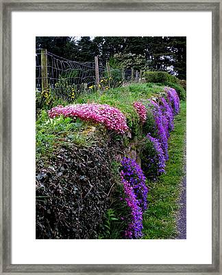 Roadside Beauty In Ireland Framed Print