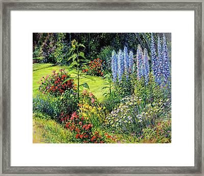 Roadside Garden Framed Print by Steve Spencer