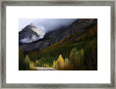 Roadside Landscape At Banff National Park Framed Print