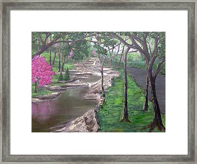 Roadside Park 1  Framed Print