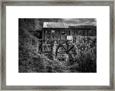 Roadside Peanut Stand In Georgia - 4 Framed Print by Frank J Benz
