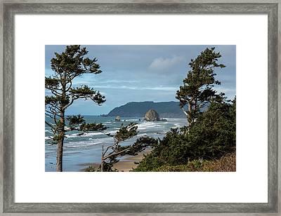 Roadside View Framed Print